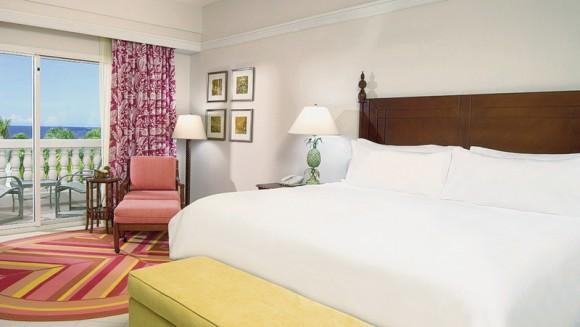 Hotel Hyatt Ziva,