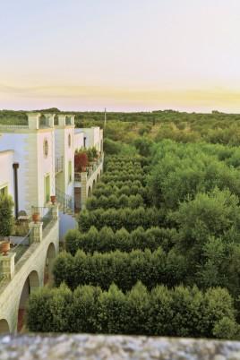 Double Tree by Hilton Acaya Golf Resort